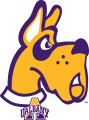 Albany Great Danes 2008-Pres Alternate Logo decal sticker