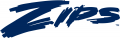Akron Zips 2002-2007 Wordmark Logo 02 decal sticker