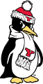 Youngstown State Penguins 1993-Pres Alternate Logo 03 iron on transfer