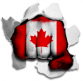 hulk CANADA Flag decal sticker