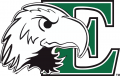 Eastern Michigan Eagles 2003-2012 Primary Logo iron on transfer
