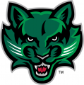 Binghamton Bearcats 2001-Pres Secondary Logo 03 decal sticker