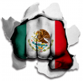 hulk MEXICO Flag decal sticker