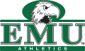 Eastern Michigan Eagles 2003-2012 Alternate Logo iron on transfer