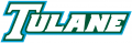 Tulane Green Wave 1998-2013 Wordmark Logo 02 iron on transfer