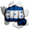 hulk HONDURAS Flag decal sticker