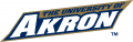 Akron Zips 2002-2007 Wordmark Logo decal sticker
