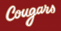 College of Charleston Cougars 2013-Pres Wordmark Logo 05 decal sticker