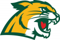 Northern Michigan Wildcats 2016-Pres Secondary Logo 01 iron on transfer