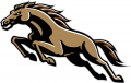 Western Michigan Broncos 1998-2015 Alternate Logo iron on transfer