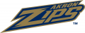 Akron Zips 2002-2013 Wordmark Logo decal sticker