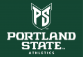 Portland State Vikings 2016-Pres Alt on Dark Logo decal sticker