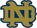 Notre Dame Fighting Irish 1994-Pres Alternate Logo 17 decal sticker