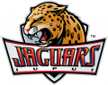 IUPUI Jaguars 2008-Pres Primary Logo decal sticker