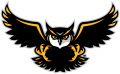 Kennesaw State Owls2012-Pres Alternate Logo 01 decal sticker