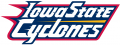 Iowa State Cyclones 1995-2007 Wordmark Logo 06 iron on transfer