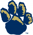 Pittsburgh Panthers 1997-2018 Alternate Logo decal sticker