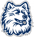 UConn Huskies 1996-2012 Alternate Logo 07 decal sticker