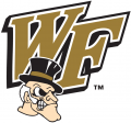 Wake Forest Demon Deacons 1993-2006 Secondary Logo iron on transfer