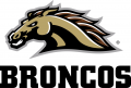 Western Michigan Broncos 2016-Pres Alternate Logo iron on transfer