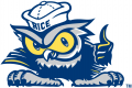 Rice Owls 2003-2009 Mascot Logo iron on transfer
