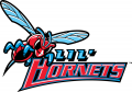 Delaware State Hornets 2004-Pres Misc Logo decal sticker