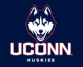 UConn Huskies 2013-Pres Alternate Logo decal sticker