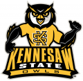 Kennesaw State Owls2012-Pres Mascot Logo 01 decal sticker