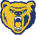 Northern Colorado Bears 2004-2009 Secondary Logo 02 decal sticker