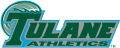 Tulane Green Wave 1998-2013 Wordmark Logo 01 iron on transfer