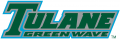 Tulane Green Wave 1998-2013 Wordmark Logo iron on transfer
