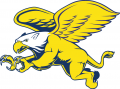 Canisius Golden Griffins 1999-2005 Secondary Logo decal sticker
