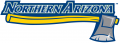 Northern Arizona Lumberjacks 2005-2013 Wordmark Logo 06 iron on transfer