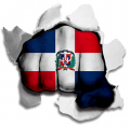 hulk DOMINICAN REPUBLIC Flag decal sticker
