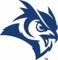 Rice Owls 2017-Pres Secondary Logo iron on transfer