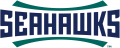 NC-Wilmington Seahawks 2015-Pres Wordmark Logo 02 decal sticker