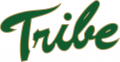 William and Mary Tribe 2009-2015 Primary Logo iron on transfer