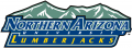 Northern Arizona Lumberjacks 2005-2013 Wordmark Logo iron on transfer