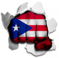 hulk PUERTO RICO Flag decal sticker