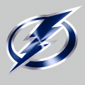 Tampa Bay Lightning Stainless steel logo decal sticker