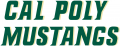 Cal Poly Mustangs 1999-Pres Wordmark Logo 03 iron on transfer