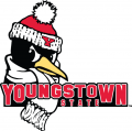 Youngstown State Penguins 2006-Pres Secondary Logo iron on transfer