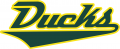 Oregon Ducks 2013-Pres Wordmark Logo iron on transfer