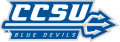 Central Connecticut Blue Devils 2011-Pres Wordmark Logo 02 iron on transfer