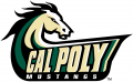 Cal Poly Mustangs 1999-Pres Alternate Logo 04 iron on transfer