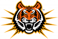 Idaho State Bengals 1997-2018 Alternate Logo 06 iron on transfer