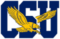 Coppin State Eagles 2017-Pres Primary Logo decal sticker