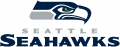 Seattle Seahawks 2012-Pres Wordmark Logo iron on transfer