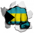 hulk BAHAMAS Flag decal sticker