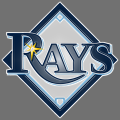 tampa bay rays 2008-pres primary plastic effect logo iron on transfer
